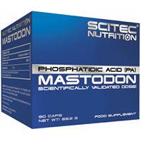 Supliment pentru arderea grasimilor Scitec Nutrition Mastodon